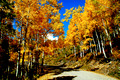 Autumn Road, Colorado