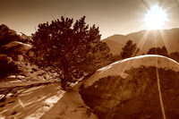 Winter Sunset in Sepia Tone, Garden of the Gods