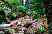 13. Summer in North Cheyenne Canyon, 4 August 2014